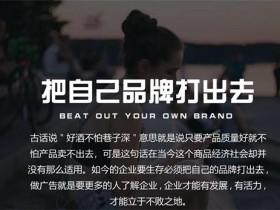河北网络推广公司哪家好?河北企业怎么做网络推广?