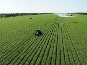 做农业如何推广?学习互联网营销能更好的推广农业吗?