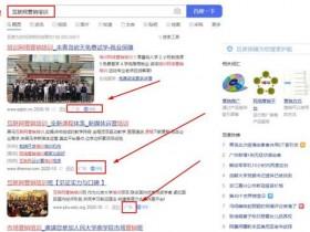 苏春宇:一个人运营网站,大量关键词排名首页方法